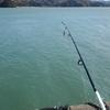 釣りとツーリングを楽しんできた話をしたいと思う