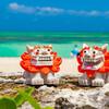 【沖縄天ぷら】沖縄の天ぷらは個性的 沖縄旅行では絶対に食するべき!