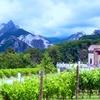 大理石のワイン・イタリア カッラーラからの贈り物