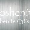 ゴッシェナイト(キャッツアイ効果のあるタイプ):Goshenite &Goshenite Cata'eye