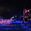 枝川公園のイルミネーション 2020.12.24