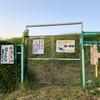 出葉池(京都府亀岡)