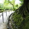 金沢旅行の思い出写真たち -その2(完結編)-