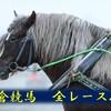 【小倉競馬場】2月9日 全レースの展望