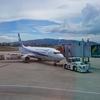 【ハワイ】旅行記②:ANAで伊丹空港⇒成田空港に移動、三本亭でお夕食