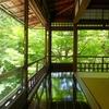 もともと「瑠璃光院」は高級旅館で、十数年前に買収されて寺院になったという話。