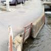 日野市の用水路を歩く005 〜川辺堀之内用水〜