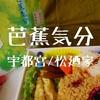 【宇都宮駅弁】昔が詰まってた!松廼家「芭蕉気分」老舗が作ったワンコイン弁当