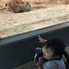 動物園と函館