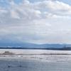 濤沸湖水鳥・湿地センター