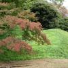紅葉目前⁉東京『小石川後楽園』