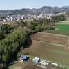 全伐採が計画されている「戸川・矢坪沢自然林」の空撮敢行!