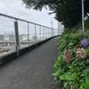 『天気の子』の東京を歩く