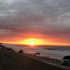 海を掃除する日(田原 太平洋ロングビーチ東)