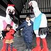 城崎温泉に、巨大な2羽のコウノトリ(兵庫県豊岡市)