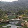 栗林公園と野鳥さん(+╹v╹+)