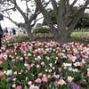 フォト散歩 - 横浜山手洋館・山下公園・横浜三塔
