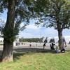 台風一過の「真夏日」マラソン練習会