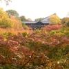 そうだ京都に行こう!紅葉・東福寺