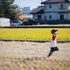 「祖父江のホタルを守る会」の収穫祭!