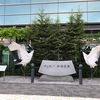 【搭乗記】ANA4874便 釧路→新千歳。十勝平野と日高山脈の眺めが良かったです。