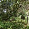 建昌城(瓜生野城)跡にいってきた、島津季久が築いた豊州家の拠点