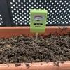 植物デストロイヤーの僕でも家庭菜園で収穫できたので紹介 野菜作りは土づくり