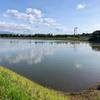 両津野球場横の池(仮称)(新潟県佐渡)