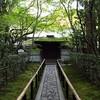 お薦めスポット:京都の「高桐院」