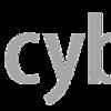 叶姉妹を見にCybozu Days2017に参加したら普通にイベントが楽しかった件について