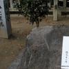 慰霊碑の記念の植樹