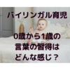 国際結婚育児 0~1歳頃の言語習得状況。