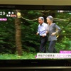 天皇皇后両陛下がスロージョギングをされて一年。スローの意味を再び考える