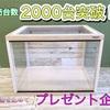 プレゼント企画!販売台数2000台突破!