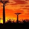 世界一周で本当に感動した絶景inアフリカ!9選(11ヶ国)