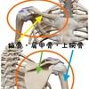 肩編 体幹機能を高める