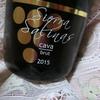 【晩酌ワイン】スペインのコク旨辛口白泡~シエラ サリナス ブリュット