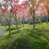 クラブツーリズムの桐原と行く箱根の旅・・・2
