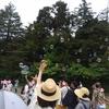 【Yokohama Nature Week 2019】キラキラの日差しにシャボン玉、ピザにバンド生演奏。最終日に堪能して来ました!