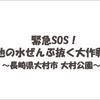 地元にテレビ東京「緊急SOS!池の水ぜんぶ抜く大作戦」がやってくる!?(⦿_⦿)