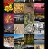 SwiftでFlickrの人気写真を見るアプリを100行で作ったよ