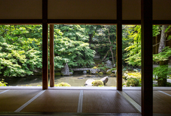 【京都の庭園入門・前編】これだけは知っておきたい! 観光のプロが教えるお庭の基礎知識