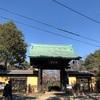 豪徳寺周辺をお散歩