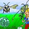 怖くないアシナガバチ