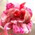 ピンクと赤のお花