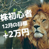 株の初心者が月に2万円稼ぐ~2018年12月 その1~