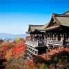 京都 清水寺 夜間特別拝観
