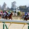 ニコ動『リアルダービースタリオン』出身馬がデビュー戦勝利! 繁殖牝馬購入から、種牡馬選び、種付け……ついに「みんなの馬」が走りだす!