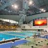 東京都新春水泳競技大会2020