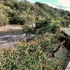 上池(和歌山県かつらぎ)